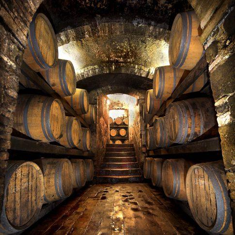 servizi fotografici vino bottiglie cantina botti