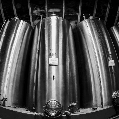 servizi fotografici vino bottiglie botti acciaio cantina